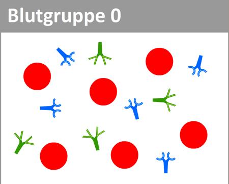blutgruppe-0-kl