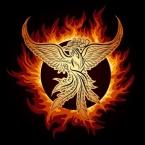 Phoenix in Flame