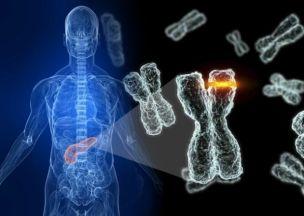 Telomero-estudados-pela-empresa-Cálico-do-Google-visando-domínio-do-DNA-Fonte-CanalTech.