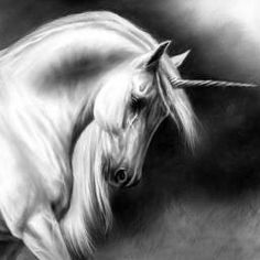 8e6ccdc99dd559aaab4210cb5d8c095e--majestic-unicorn-unicorn-painting