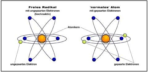 freie_radikale_antioxidantien