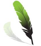 groene-veer-5272122