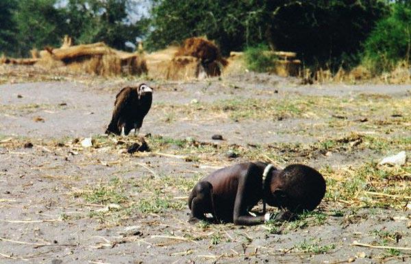 hungerndeskindgeier86bf