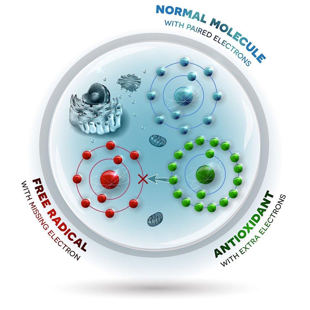 Moleküle+